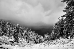 Early Snow on Crater Lake's Rim (Fort Photo) Tags: trees winter lake snow nature oregon forest landscape early nationalpark nikon nps or first crater craterlake 2009 d300 craterlakenationalpark silverefexpro