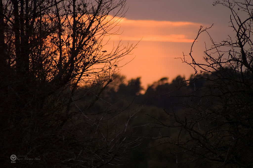 Chase autumn sunset