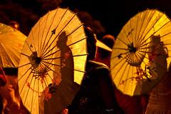 Under my umbrella (semaryp) Tags: light party reunion umbrella island lumire indian ile celebration parasol fte diwali indien dipavali semaryp
