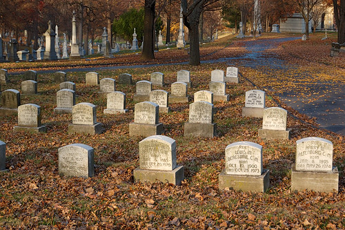Calvary Catholic Cemetery, in Saint Louis, Missouri, USA - graves of Vincentians