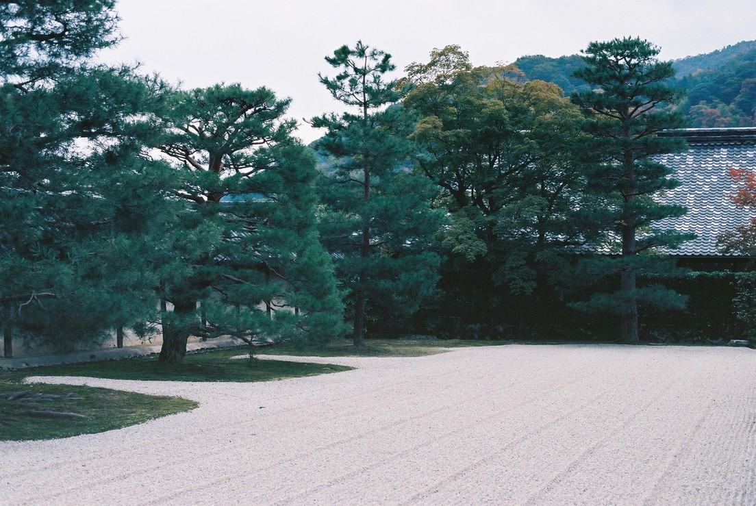 天龍寺方丈庭園