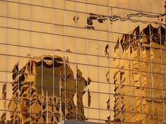 Visions in Gold (Stella Blu) Tags: stella distortion canada abstract window glass monochrome canon reflections gold golden office downtown edmonton blu towers alberta twothumbsup bigmomma gamewinner challengeyouwinner a640 15challengeswinner thechallengefactory herowinner storybookwinner pregamewinner