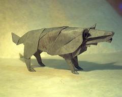 "Hideo Komatsu's ""Wolf"" (eteokles) Tags: origami wolf origamiforum hideokomatsu origamiwolf"