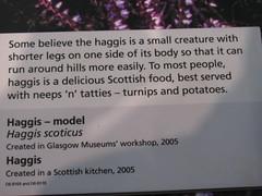 2009_Scotland_1 023