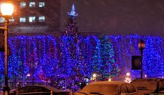 Downtown Christmas Lights (20091209-185306-PJG) (DrgnMastr) Tags: canada geotagged christmaslights newbrunswick moncton cropped allrightsreserveddrgnmastrpjg rawjpg geo:lat=46089949 geo:lon=64776217
