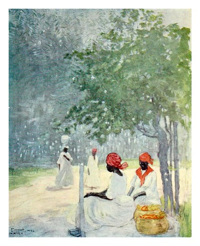 027- Calor del mediodia en Jamaica-The West Indies 1905- Ilustrations Archibald Stevenson Forrest
