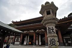 Tokyo 2009 - 鎌倉 - 長谷寺(8)