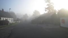 IMG_1425 Denmark Tun (Denmark Jonll) Tags: morning sunshine fog tun