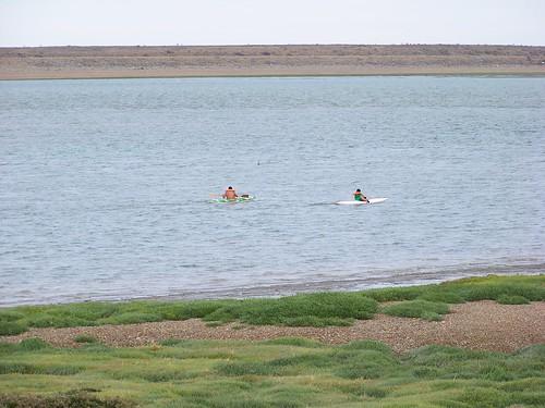 Kayaks en la bahía