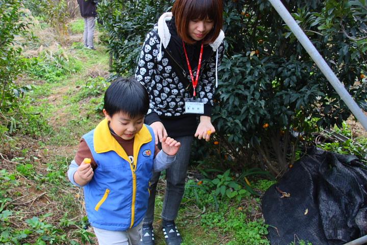 三芝番婆林花園(花卉、醬菜)0032