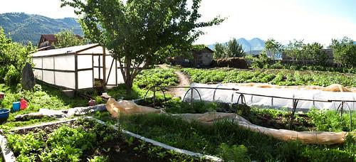 Pension Radna vege garden