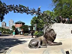 Chicago, Lincoln Park Zoo, Entrance, Lion Sculpture (Mary Warren (7.9+ Million Views)) Tags: chicago lincolnparkzoo nature entrance portal art sculpture bronze lion