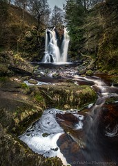 Posforth Gill Waterfall (jasonmgabriel) Tags: waterfall yorkshire dales bolton abbey tree rock landscape scenerystream water