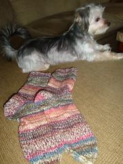 Knit Socks 08