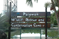 The Palawan Wildlife Rescue and Consevation Center (adcristal) Tags: farm philippines farming nikond70s crocodile croc puertoprincesa palawan crocodilefarm barangay irawan tamron1750mmf28 palawanwildliferescueandconservationcenter