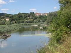 Arno area protetta ponte a Buriano