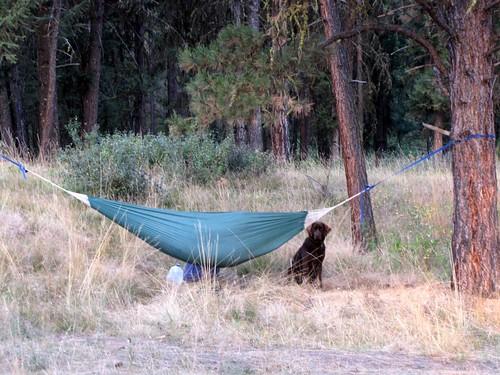 Streamline Camping