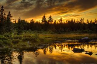 Sunset at West Shirley Bog