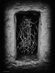 Pagan Poetry [2009] (FSUBF) Tags: forever 2009 2007 paganpoetry blackwhitephotos