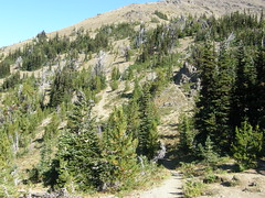 Views looking towards Buckhorn Mountain from Marmot Pass.