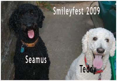 54-Seamus-and-Teddy---3