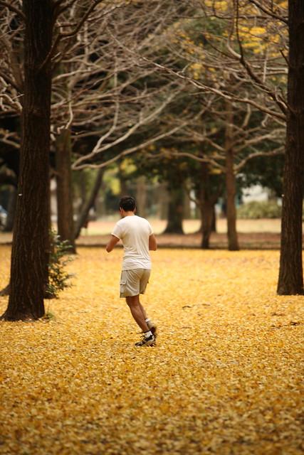 林間ジョギング