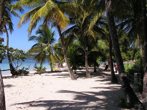 Guadeloupe141