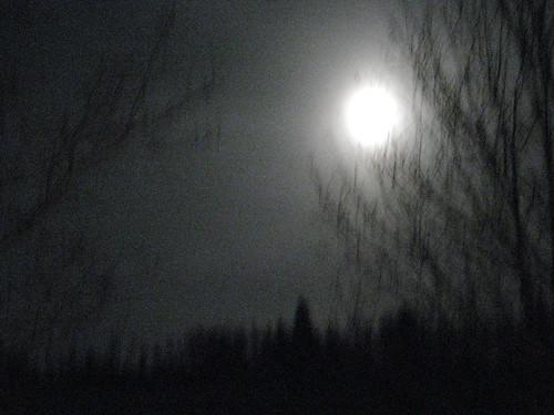 mars 08 022