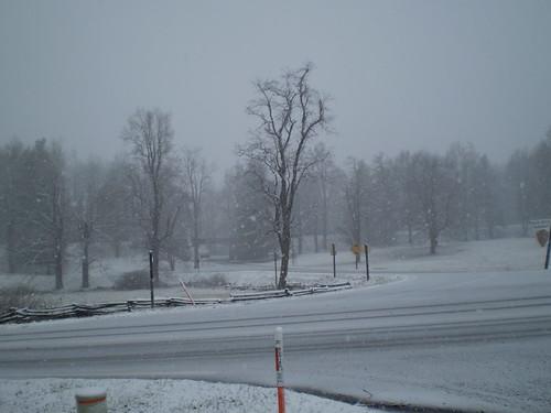 First Snow, December 5, 2009