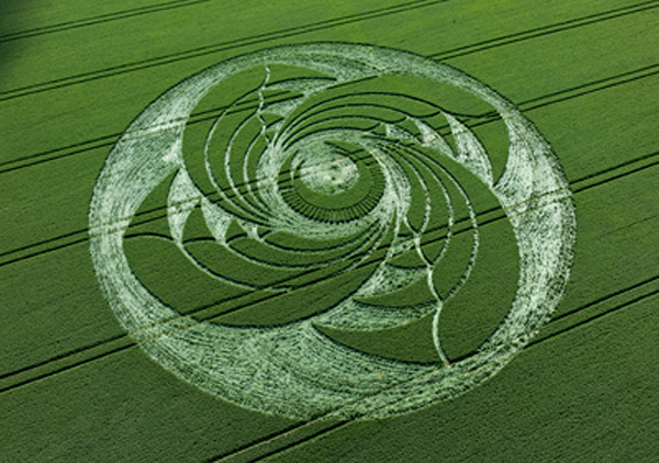 crop_circle_alton_priors