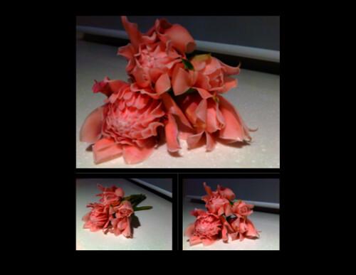 Bunga Kantan2