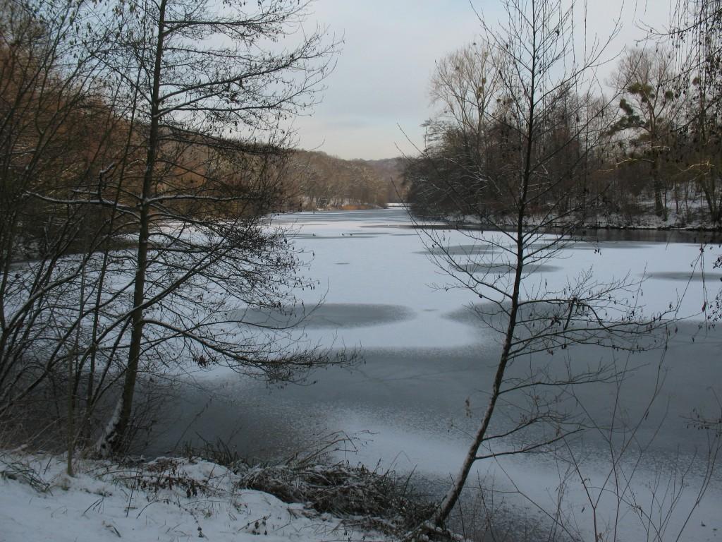 [White spirit] Vive la neige 78 4195553902_31f25f5c41_o