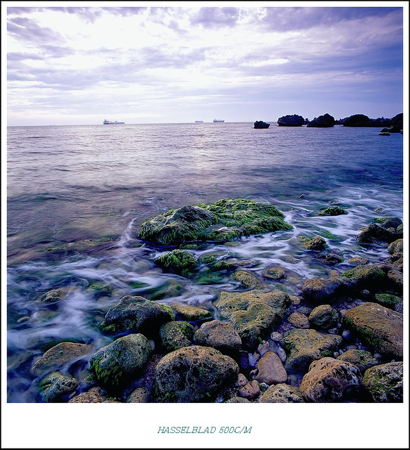 2011西子灣綠藻 尾聲 -- 補檔