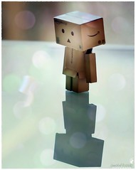 Why are you upset, Danbo? (prixtina) Tags: canon danbo canon100macro canoneos1000d prixtina