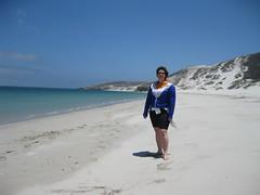 On San Miguel Island