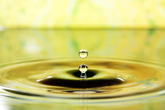 Waterdrop (Dan. D.) Tags: macro water speed canon photography high waterdrop flash 100mm 5d remote setup splash f11 f28 580ex highspeed highspeedphotography alemdagqualityonlyclub