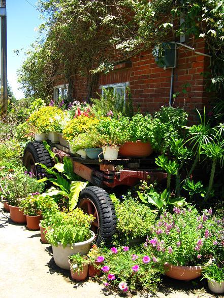 餐廳外的小車盆栽