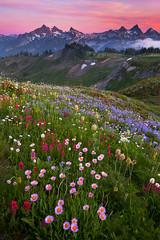 Rainier - 2009 (Jesse Estes) Tags: 1635ii 5d2 jesseestesphotography
