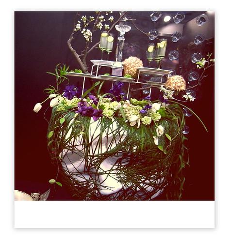 你拍攝的 花博會 預覽 (花之舞)。
