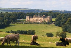 Harewood House (Heaven`s Gate (John)) Tags: trees england house home field architecture landscape scenery view cows sheep farm yorkshire leeds harewoodhouse stately johndalkin heavensgatejohn