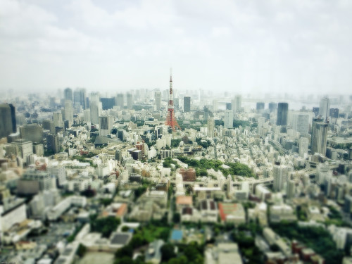 16211 : Scenery with Tokyo Tower #2