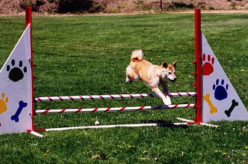 Kishi-jump