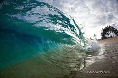 A tubing wave breaking onto the beach, on the north shore of Oahu, Hawaii (Sean Davey Photography) Tags: pictures color horizontal glitter contrast hawaii shiny energy glow power oahu fineart tube barrel clarity photographers clean northshore dreamy curl seethrough transparent tubing curling warmlight fineartphotography greenenergy simmer gre