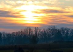 November 14 Prescott (hz536n/George Thomas) Tags: morning november trees fall sunrise lab michigan upnorth 2009 prescott morningsky smrgsbord cs3 labcolor ogemawcounty ogemaw