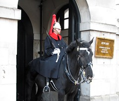 London, England (Mic V.) Tags: life city uk blue red england white london soldier army 1st britain military united capital great guard royal blues first kingdom queens mounted londres sword household monarchy cavalry helmets plume squadron lifeguards sentry regiment royalhorseguards dragoons tunics hcmr