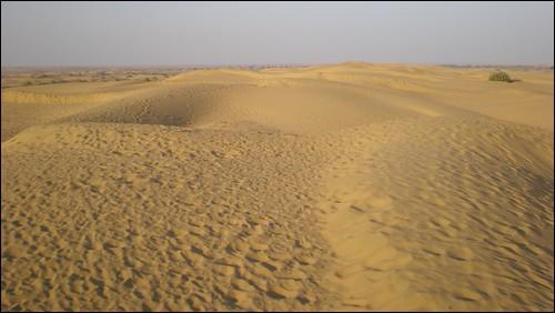 Thar Desert dunes