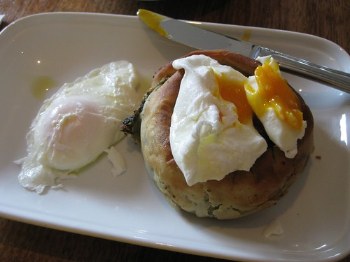 Spanakopita & Eggs 3