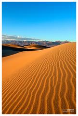 Mesquite Sand Dunes (Kentin31) Tags: california travel usa nature landscape dunes sable deathvalley paysage hdr sanddunes aficionados mesquitesanddunes sandripples k10d colorphotoaward nationalparkdesert