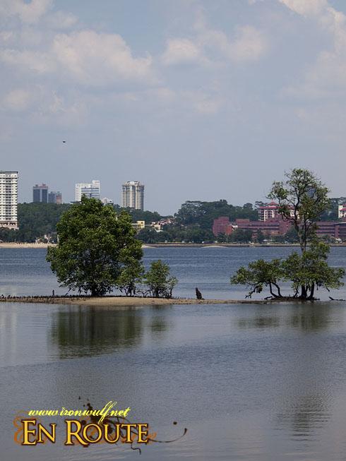 Sungei Buloh Wetlands Reserve Malaysia Across