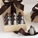 MOH Penguins